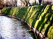 River_Embankment_with_grass.jpg